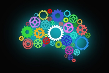 Brain of coloured cogs